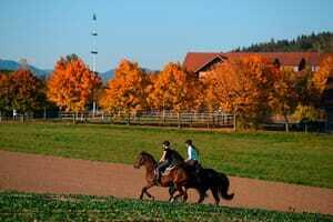 Zwei Frauen reiten im Herbst auf Perden_Ulrichshof_Rimbach