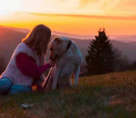 Frau mit Hund beim Sonnenuntergang_Waldeck_Philippsreut-Mitterfirmiansreut