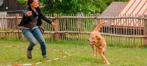 Frau die einen Hund trainiert_Waldeck