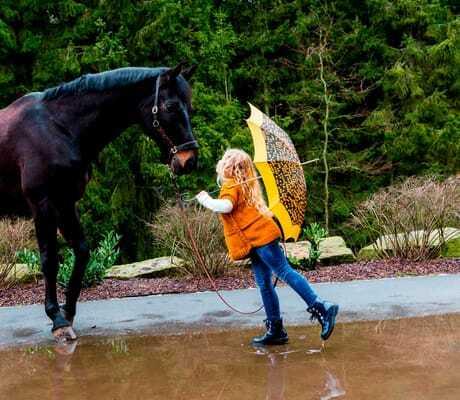 Mädchen steht vor einem Pferd_Ulrichshof_Rimbach