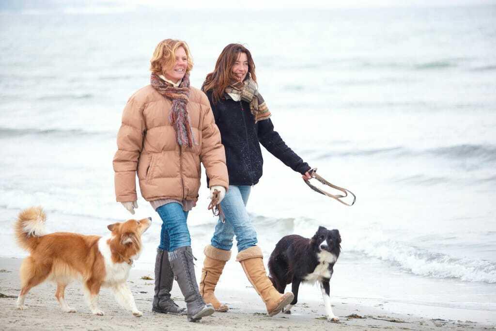 Zwei Frauen mit zwei Hunden beim Spaziergang am Strand