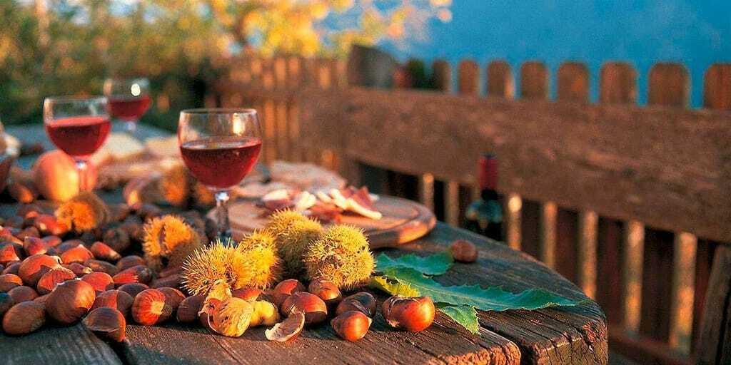 Reiseziele im Oktober Südtirol Brotzeit Wein