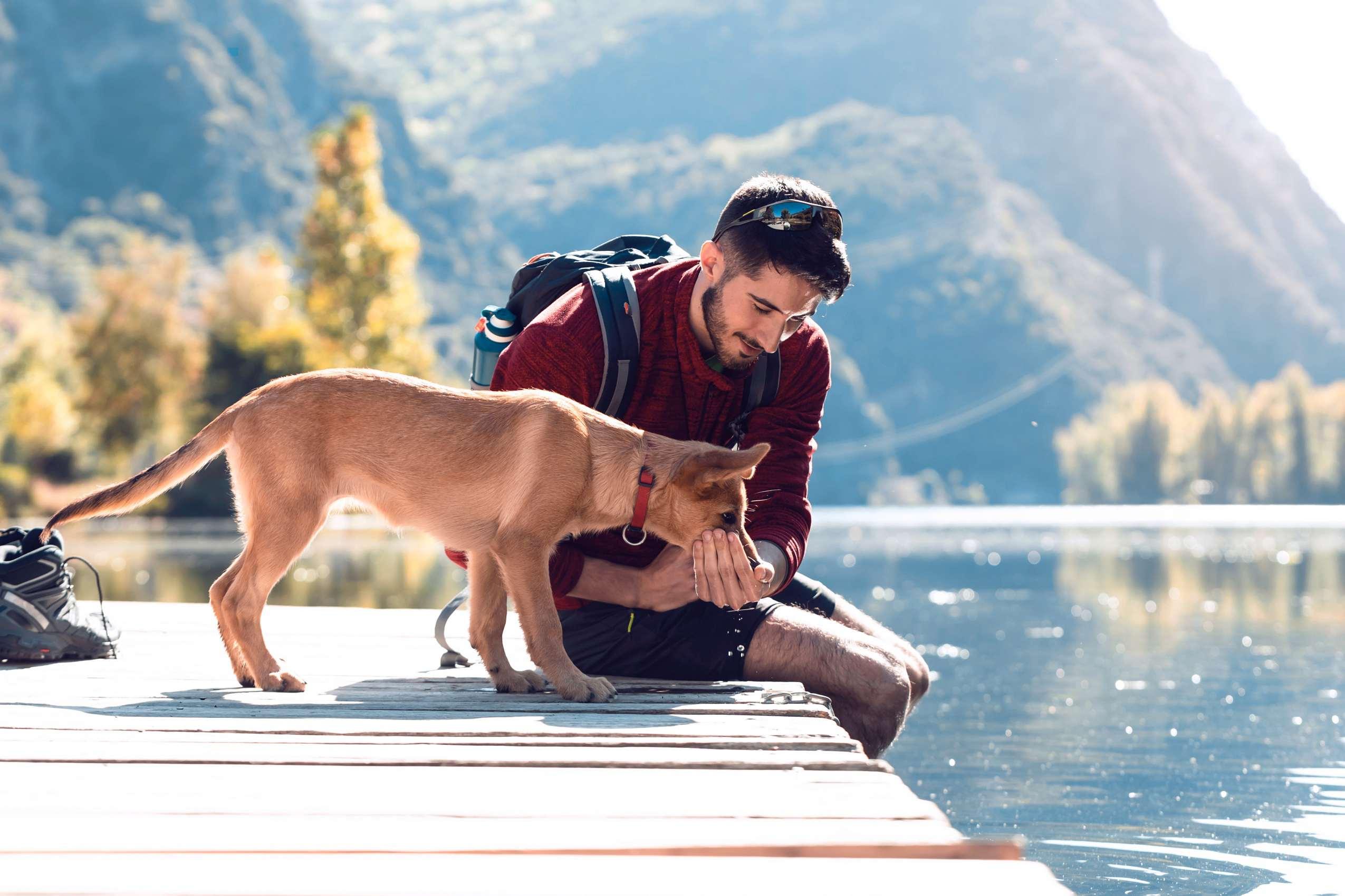 Mann mit Hund auf einem Steg
