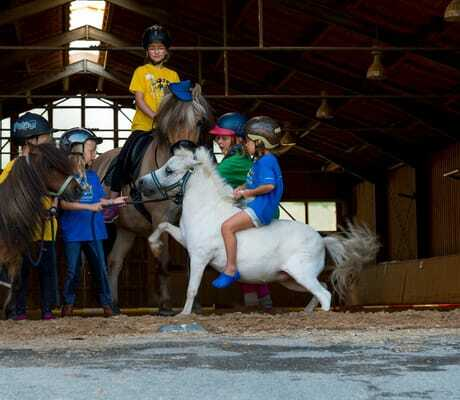 Kinder im Reitstall mit Pferden