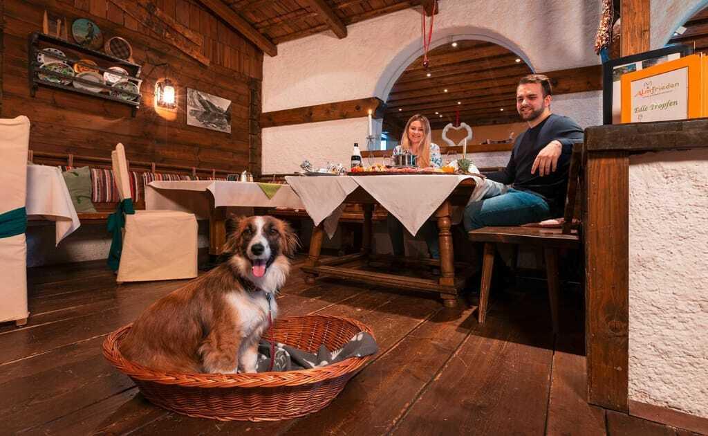 Restaurant mit Hund im Körbchen und Hundebesitzern am Tisch
